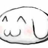Doggie2G